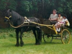 Eddie's mare Bess courtesy Eddie McDonough